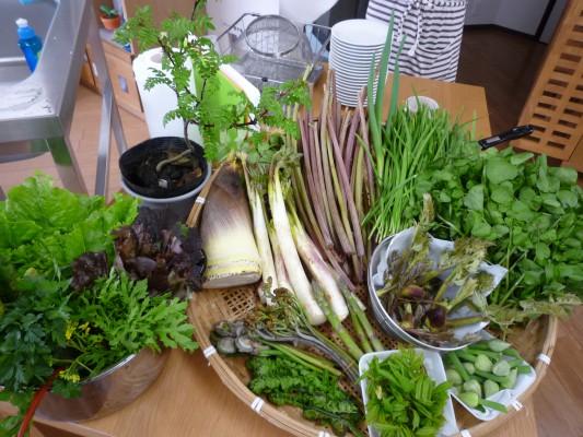 旬4月山菜盛り
